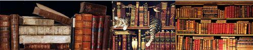 Literarische Buchwesen und wo sie zu findensind